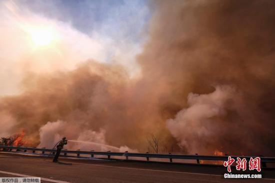 【蜗牛棋牌】美加州山火致逾40死 特朗普宣布实行重大灾害制度